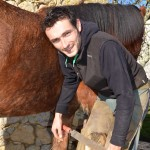 Communauté des Communes du Sauveterrois - C'est le pied pour les chevaux